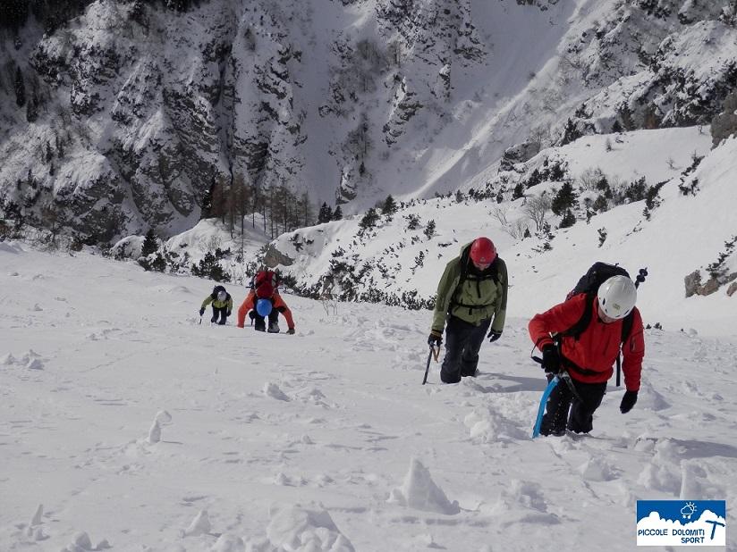 Boale d'inverno - Monte Pasubio