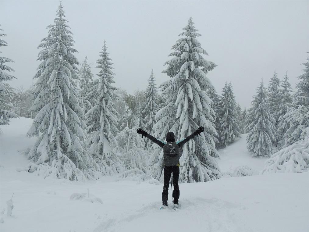 escursione sotto la neve