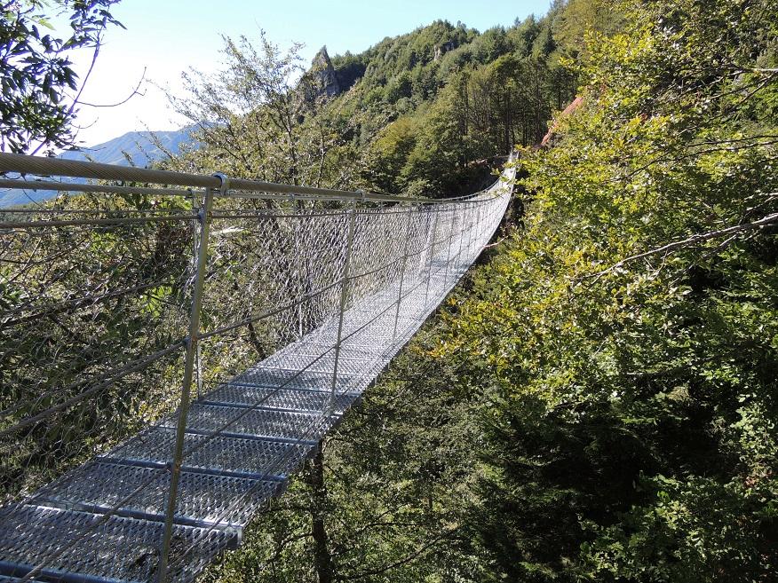 Ponte Avis